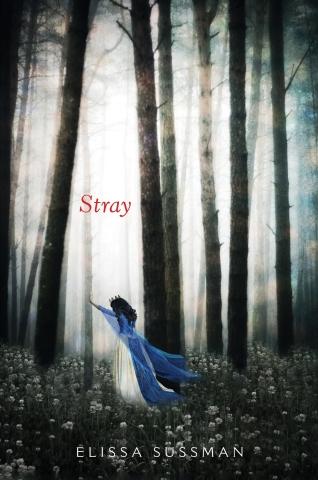 stray-hc-c